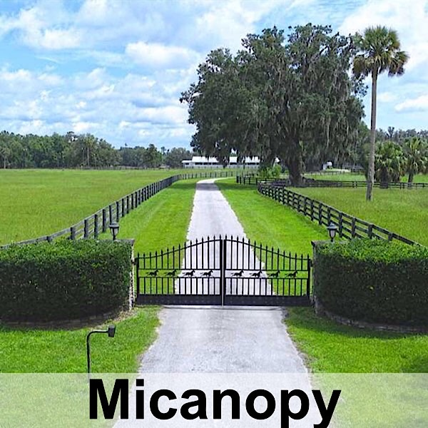 Micanopy, FL Real Estate and Homes For Sale