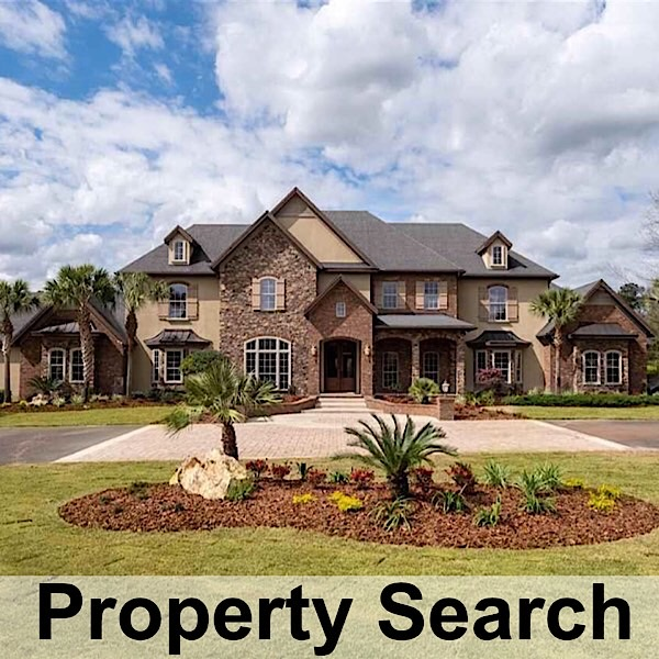 Gainesville Real Estate Search